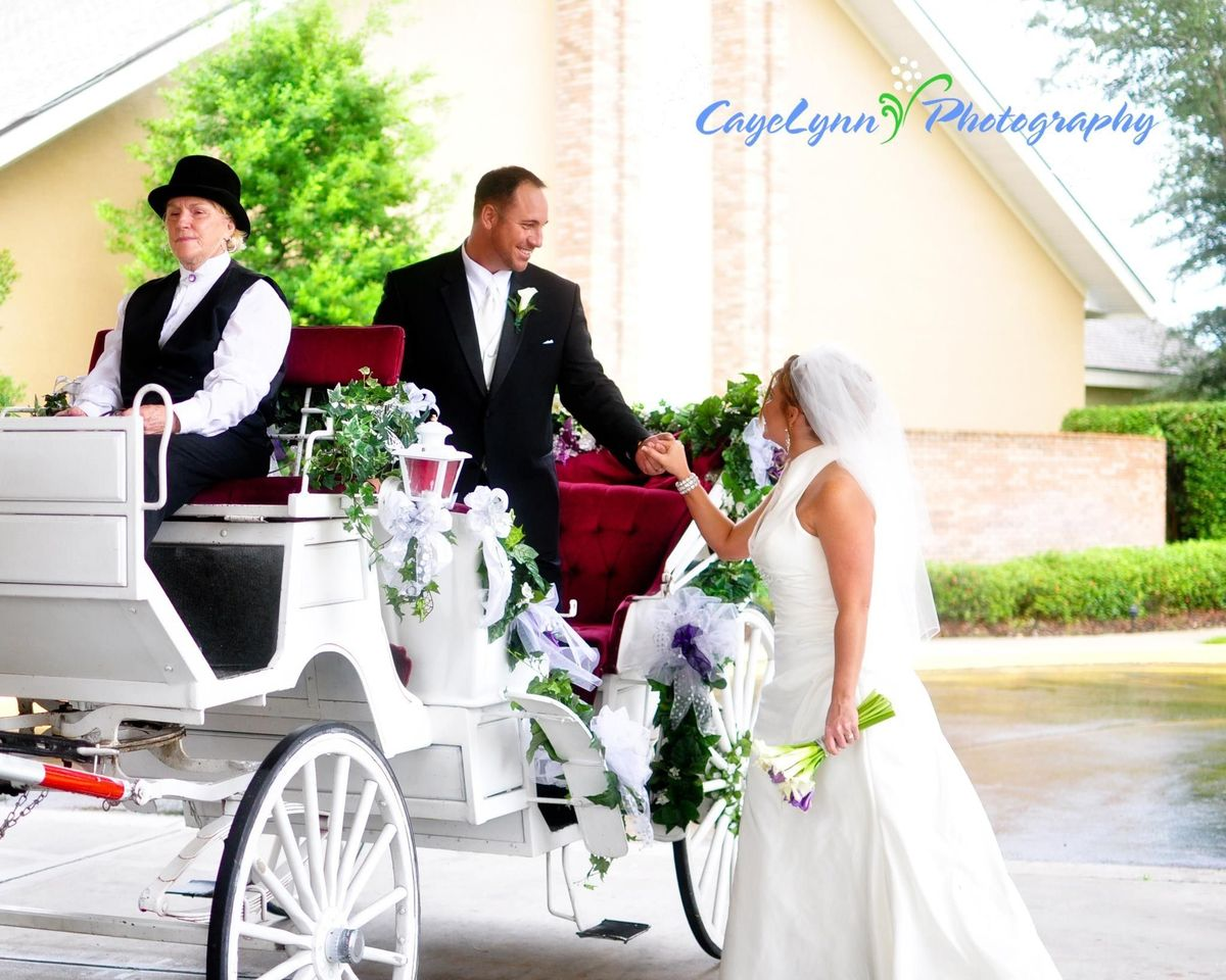 Avalon west carriage service reviews ratings wedding for Wedding dress rental tampa