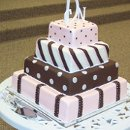 130x130 sq 1239134638515 cuteweddingcake1