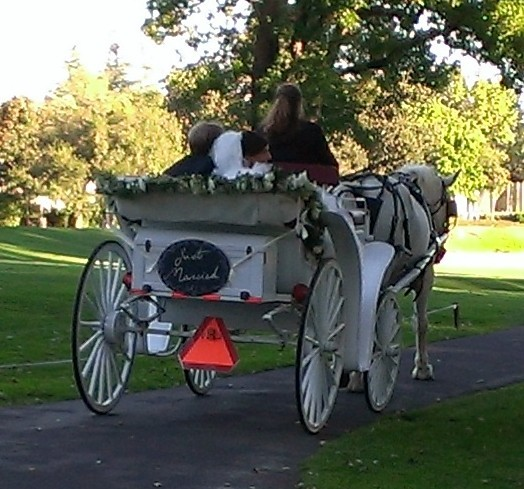 Modesto And Central Valley Wedding Planner And Event: Vintage Carriage Company, Wedding Transportation