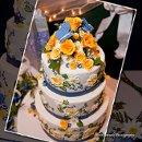 130x130 sq 1256830656630 butterfliesandrosesweddingcake