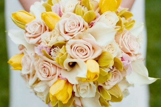 Wedding Flowers Salt Lake City Utah : Blooms blossoms floral reviews ratings wedding