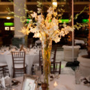 130x130 sq 1384735388701 golden reception centerpiece