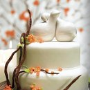 130x130 sq 1287776424279 weddingcakeimage