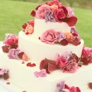 130x130 sq 1295508051872 weddingcakerecipeideas