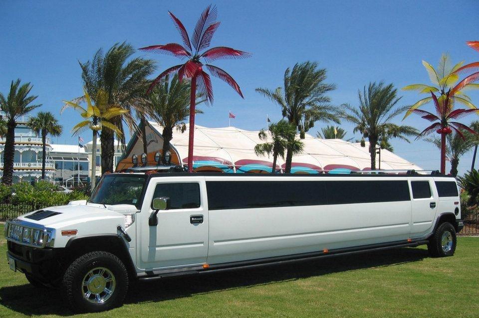 Artiste Limousine Service Wedding Transportation New York
