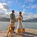 130x130 sq 1315891340323 petfriendlyparadisebayresortwedding