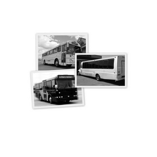 Motor city party bus wedding transportation michigan for Motor city party bus