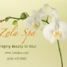 Zola Mobile Spa and Salon