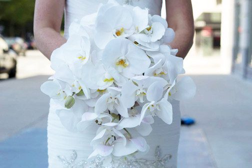 Wedding Flowers Flint Mi : Eleven events reviews ratings wedding flowers