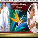 130x130 sq 1328979704214 fantasyislanddreamweddingswebsitecover