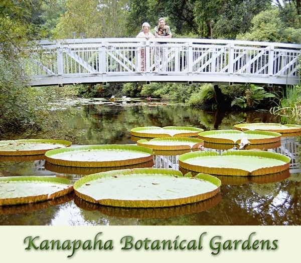 Kanapaha Botanical Gardens, Wedding Ceremony & Reception