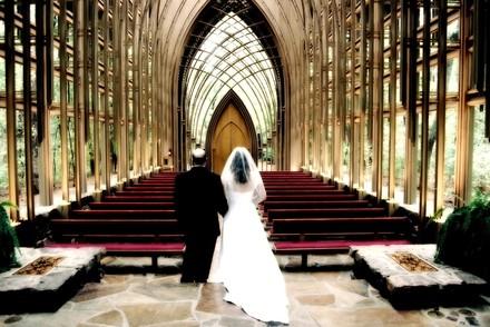 kansas wedding photographers reviews for 119 photographers