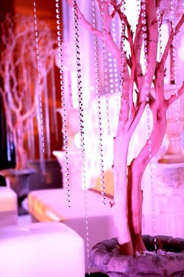 Enchanted events dc wedding lighting decor district of for Decor rent event woodbridge va