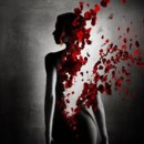 130x130 sq 1397006871473 rose petals and woman silhouette9055