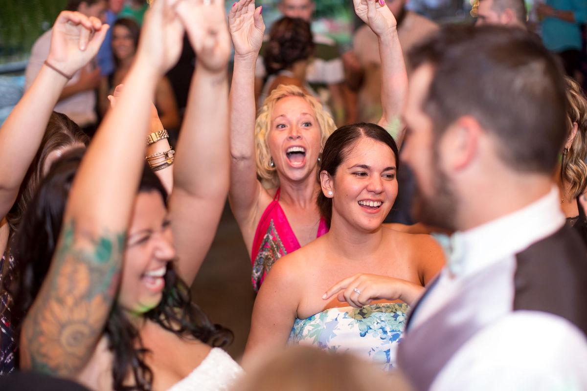 Elite Entertainment Services, Wedding DJ, Wedding Event ...