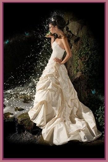 Bridalssolutions wedding dress attire florida for Wedding dresses orlando fl