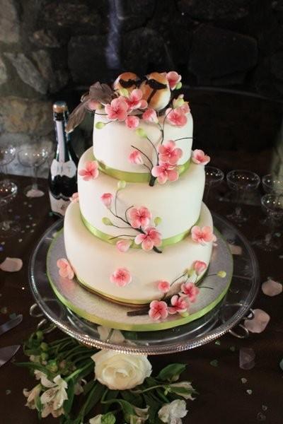 Simply Elegant Cakes Wedding Cake Colorado Denver