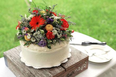 syracuse wedding photographers reviews for 227 photographers