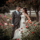 130x130 sq 1521162522 8d0d3a765d75d873 simply unforgettable elopements 03