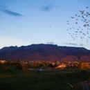 130x130 sq 1476986060381 birds