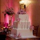 130x130 sq 1222374121184 cake