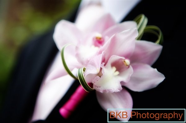 photo 6 of Pink Orchid Weddings