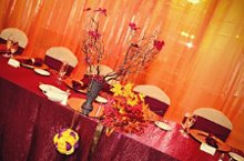 Adora Event Rental photo