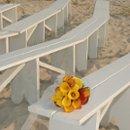 130x130 sq 1222698763289 flora 0667