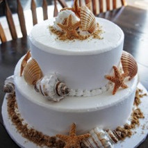 220x220 sq 1476820861948 cake.seashells.maxwellwedding