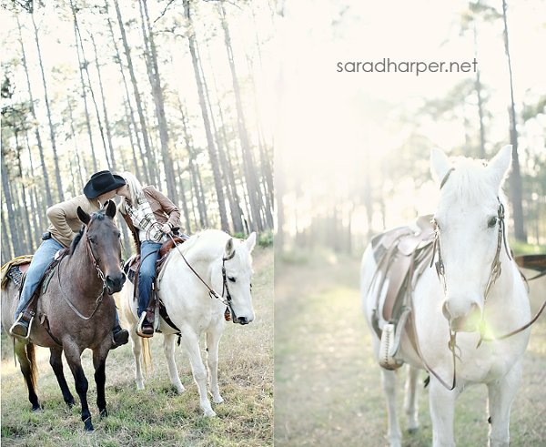 photo 36 of Sara D Harper Photography
