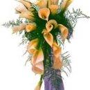130x130 sq 1228488167164 aaa cf ad flowerpicture