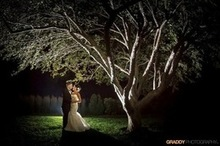 220x220 1454965325 e6d3e4b98c4cebc0 the knot tree shot