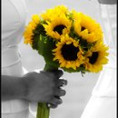 130x130 sq 1291701491614 weddingdvd039