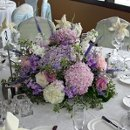 130x130 sq 1317786512995 600x6001251574478597receptioncenterpieces