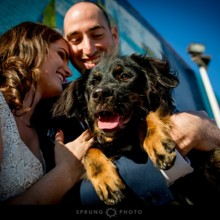 220x220 sq 1481227322291 chicago wedding photographer victoria sprung photo