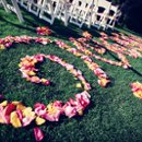 130x130 sq 1283898578720 weddingofjessicableim