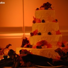 220x220 sq 1418778920176 hudson valley wedding dj bri swatek cake uplightin