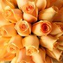 130x130 sq 1228425257590 roses