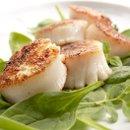 130x130_sq_1257976434568-seafood