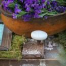130x130_sq_1371838980979-floral-6