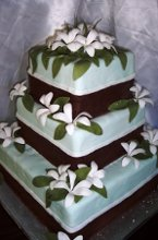 220x220_1205336792016-blue_chocolate_with_white_flowers