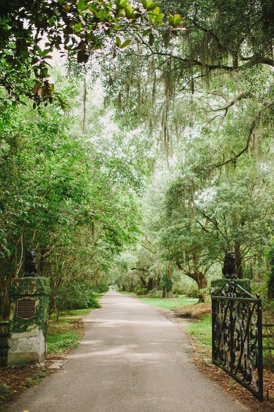 Magnolia Plantation And Gardens Charleston Sc Wedding Venue