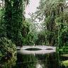 Magnolia Plantation and Gardens image