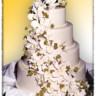 96x96 sq 1500408669913 cake4