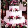 96x96 sq 1500408681315 cake7