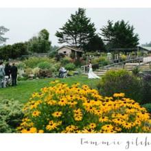 Mendocino Coast Botanical Gardens Venue Fort Bragg Ca Weddingwire