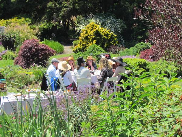 Mendocino Coast Botanical Gardens Fort Bragg Ca Wedding Venue