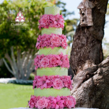 220x220 sq 1484506006721 wedding cake lime green cake with pink flowers1 25