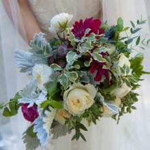 Meredith and puja wedding