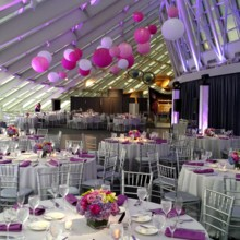 220x220 sq 1453404462491 fuschsia uplighting and lanterns at an adler plane